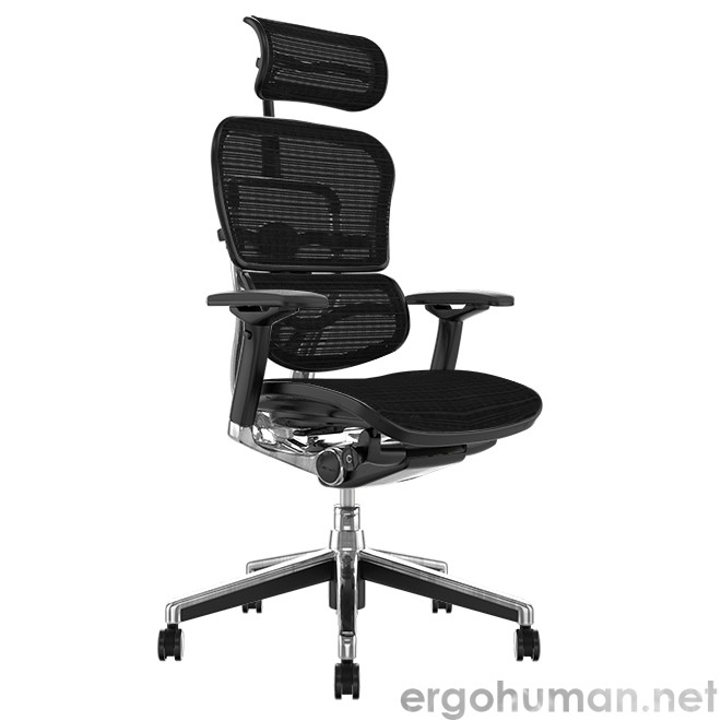 Ergohuman Elite Leather Office Chair